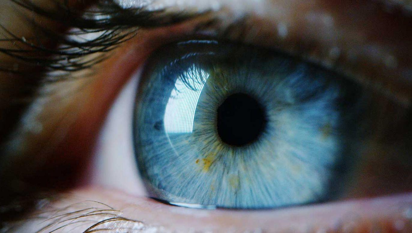 Na oczach też mamy mikrobiom. Równie ważny dla zdrowia, jak ten w jelitach (fot. Shutterstock/HQuality)