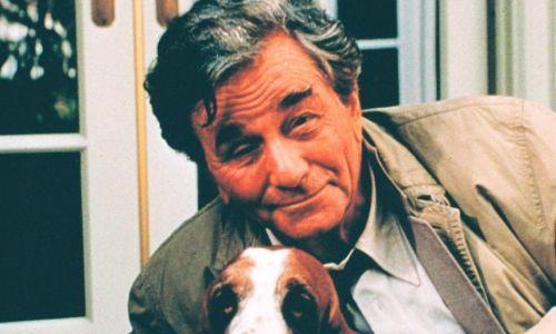Peter Falk jako Columbo miał też gapowatego psa – kłapouchego basseta. Porucznik często rozmawia ze swoim otyłym pupilem – zdarza się, że zwierzę znajduje dowody zbrodni. Fot. materiały TVP