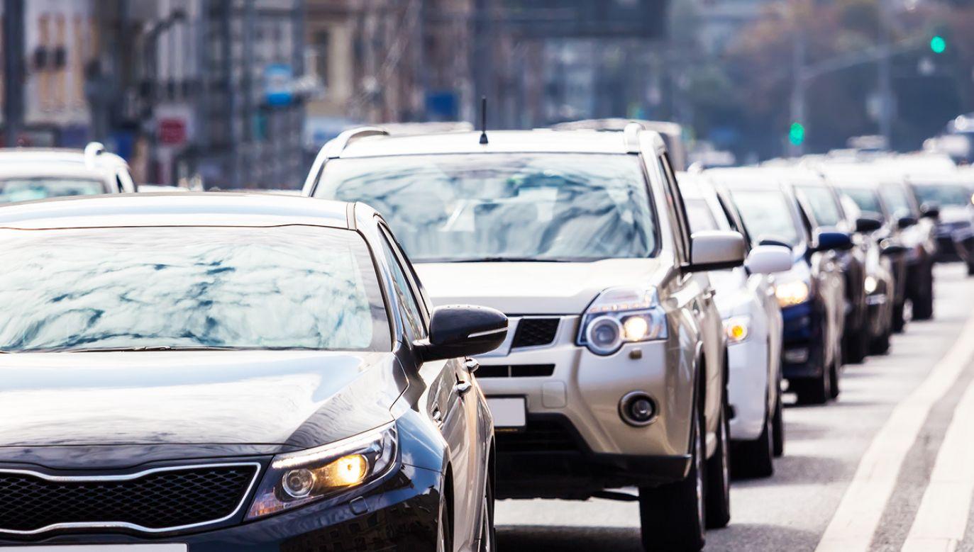 Prezydent stolicy wyznał, że ma ambitne plany walki o czyste powietrze (fot. Shutterstock/Gubin Yury)
