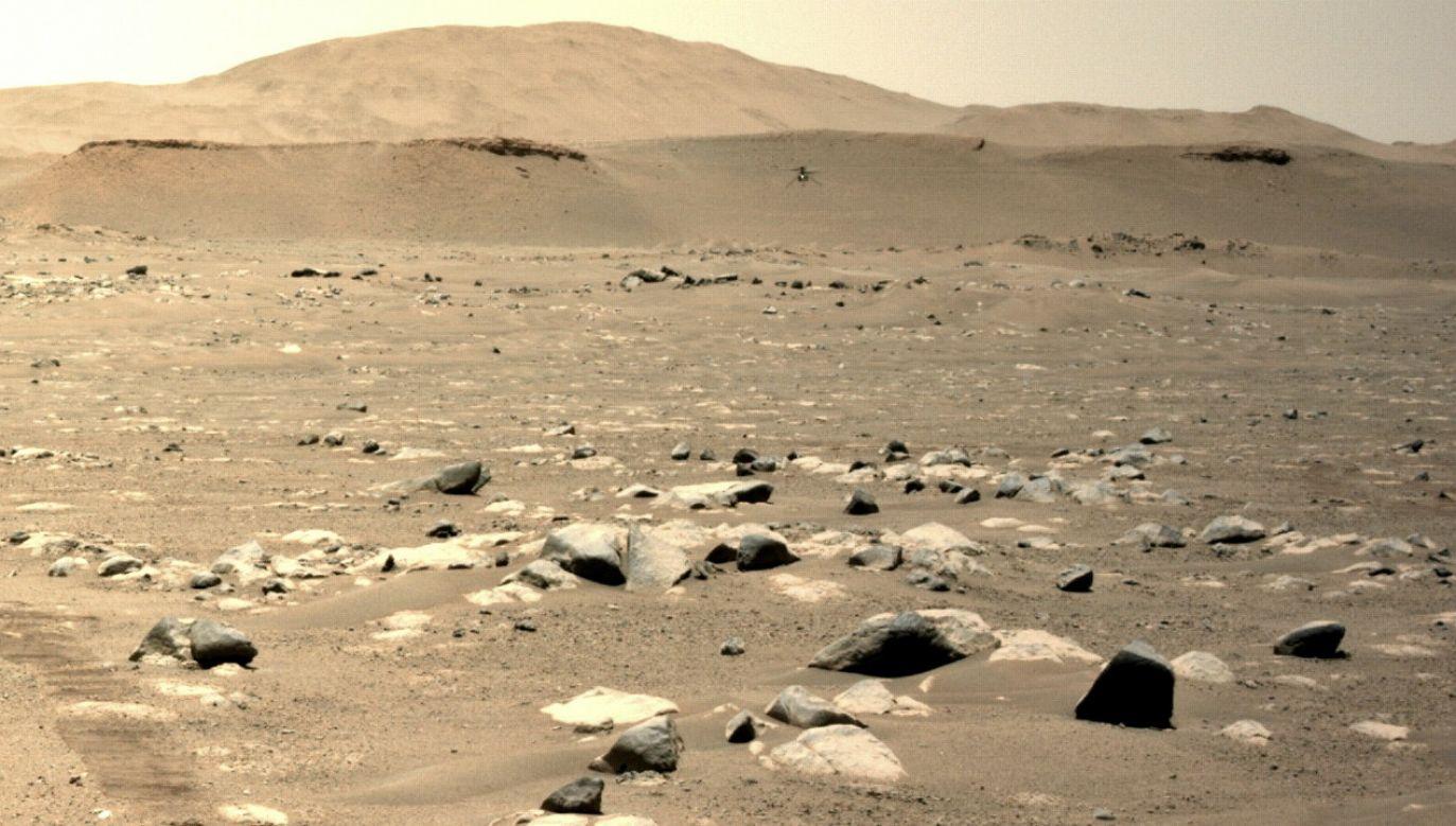 Pod powierzchnią planety są substancje mogące podtrzymywać życie (fot. PAP/EPA/NASA/JPL-Caltech)