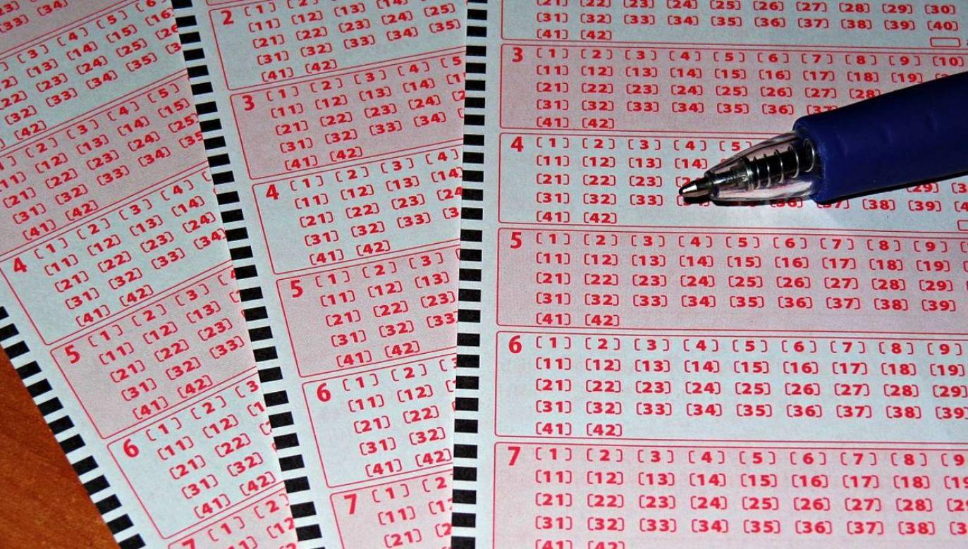Wyniki losowania Lotto (fot. Pixabay)