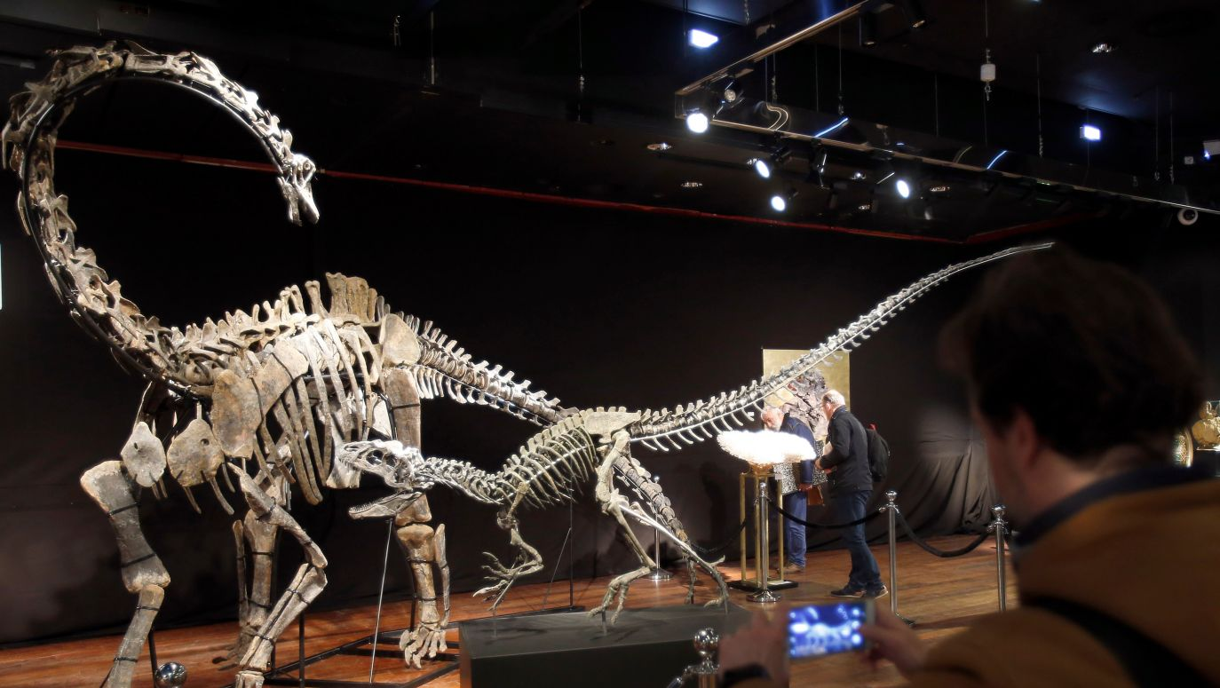 datowania skamielin dinozaur randki Hayden Christensen