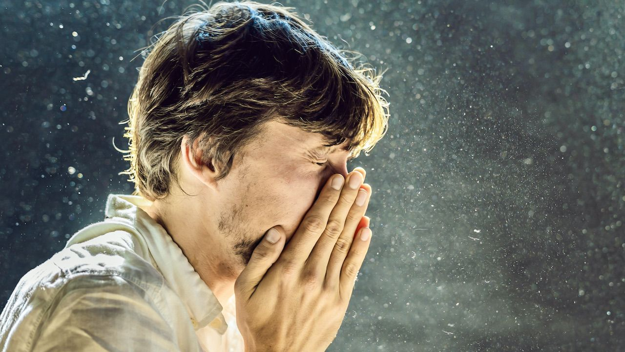 Jak to się dzieje, że kichamy?(fot. Shutterstock/Elizaveta Galitckaia)