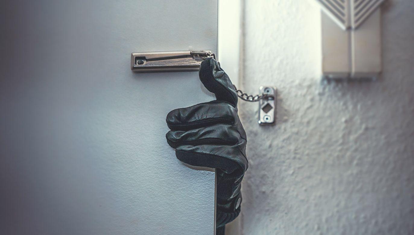 Grozi mu 10 lat więzienia (fot. Shutterstock/Alexander Kirch)