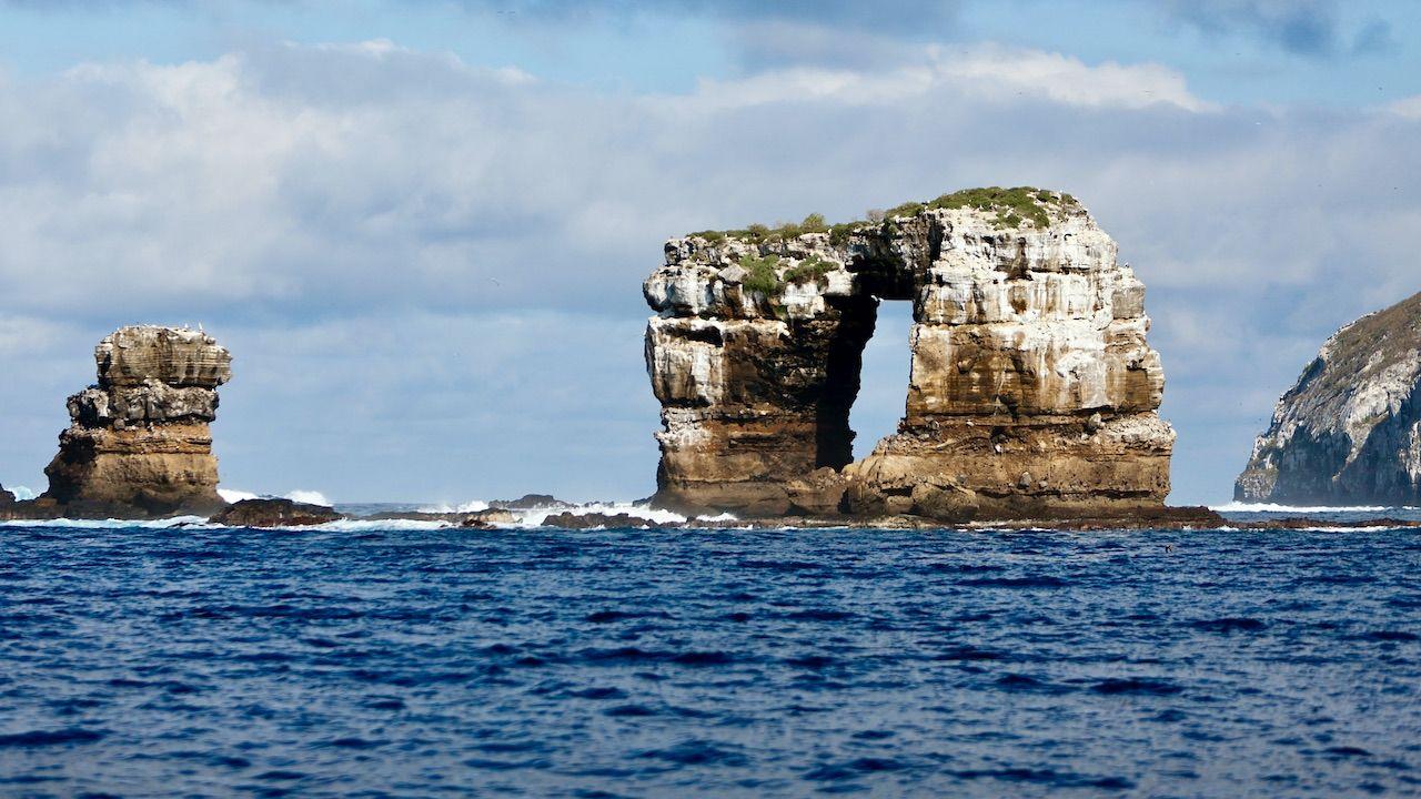 Archipelag Galapagos słynie z bogactwa dzikiej przyrody (fot. Prisma Bildagentur/UIG/Getty Images)