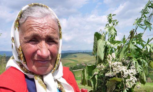 Magią ludową zajmują się głównie kobiety na wsi, zwane babkami, szeptuchami albo znachorkami, które znają się na ziołolecznictwie czy sposobach odwracania uroków. Fot. Olga Solarz