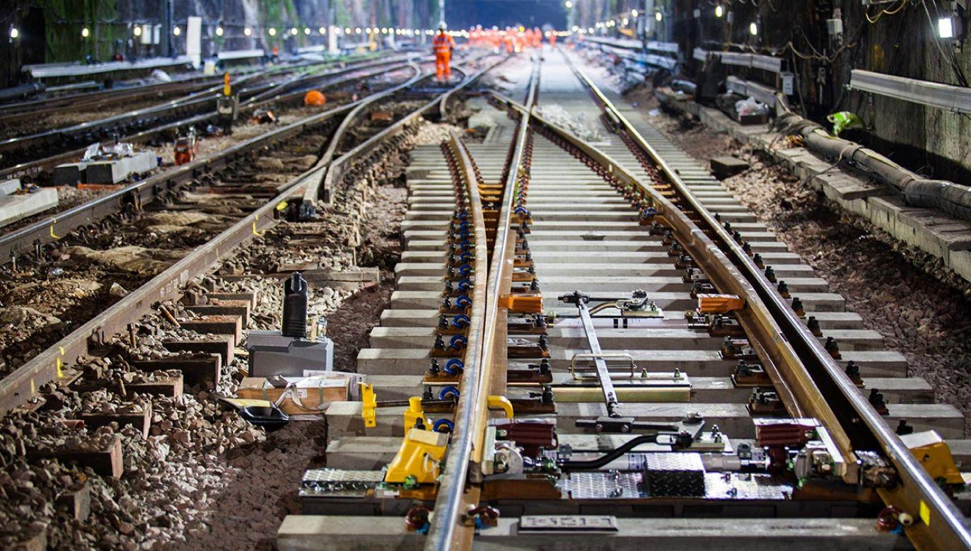 Prace budowlane CPK mają rozpocząć się za dwa lata (fot. Shutterstock/Matthew Nichol)