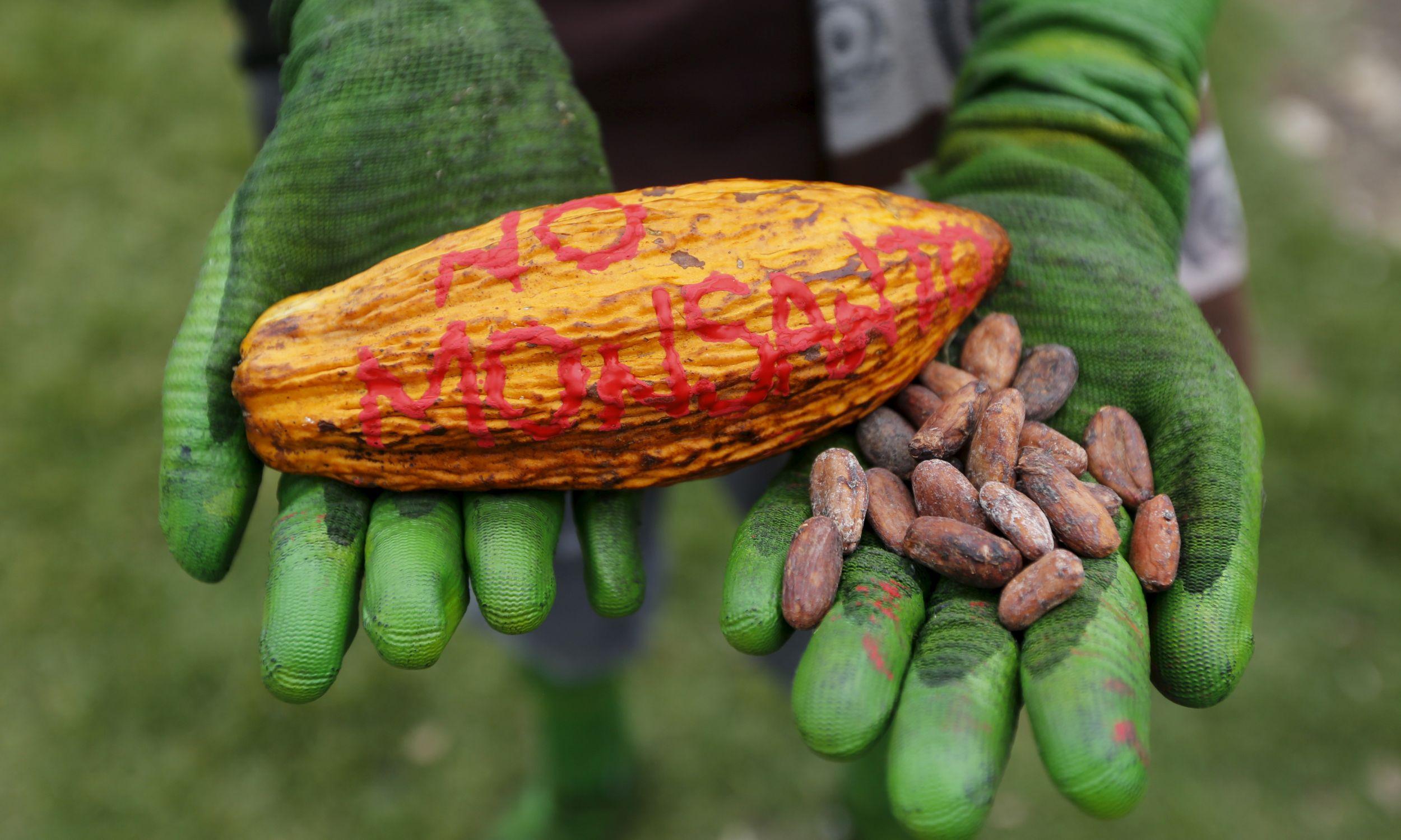 Protest w Bogocie przeciwko Monsanto, 23 maja 2015 r. W sobotę zorganizowano podobne demonstracje na całym świecie, aby podnieść świadomość zagrożeń związanych z glifosatem i środkiem Roundup. Fot. REUTERS / John Vizcaino