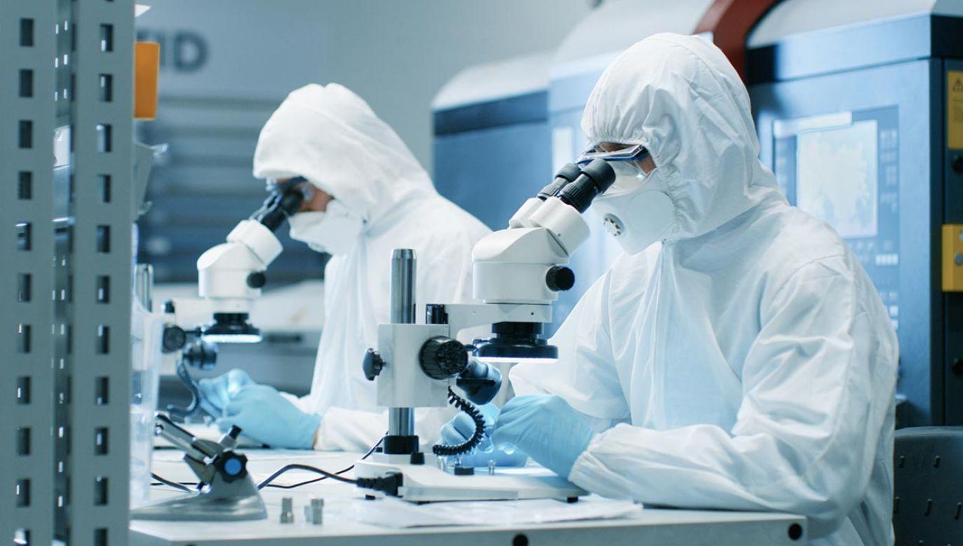 Chodzi o geny zlokalizowane w tzw. krótkim ramieniu chromosomu 3 (fot. Shutterstock/Gorodenkoff)