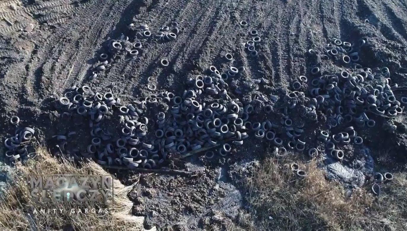 Cuchnąca maź i śmieci w lesie (fot. Magazyn Śledczy Anity Gargas)