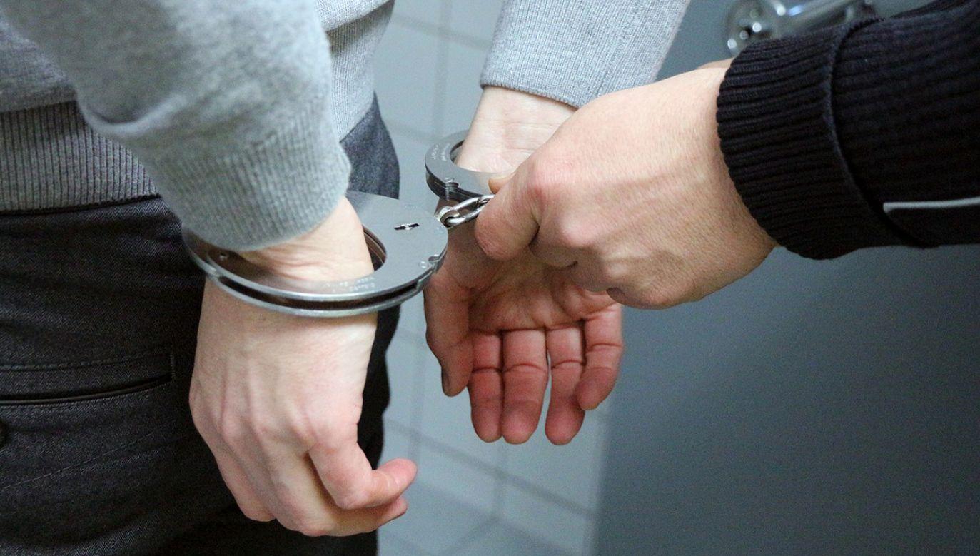 Mężczyźnie grozi do 5 lat pozbawienia wolności (fot. piksabay/3839153)