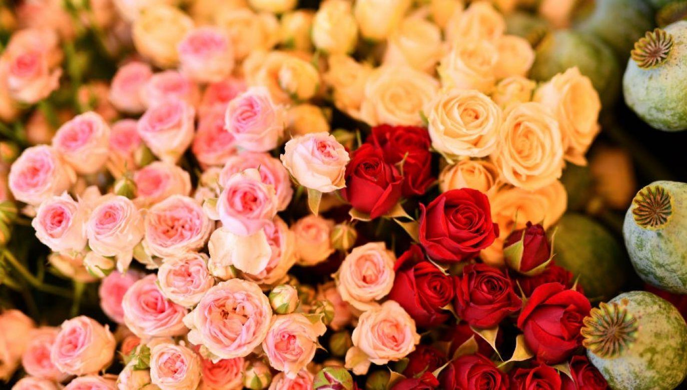 Kiedy w rok po śmierci męża Tracey po raz pierwszy dostała kwiaty, była w szoku (fot. Andia/Universal Images Group via Getty Images)