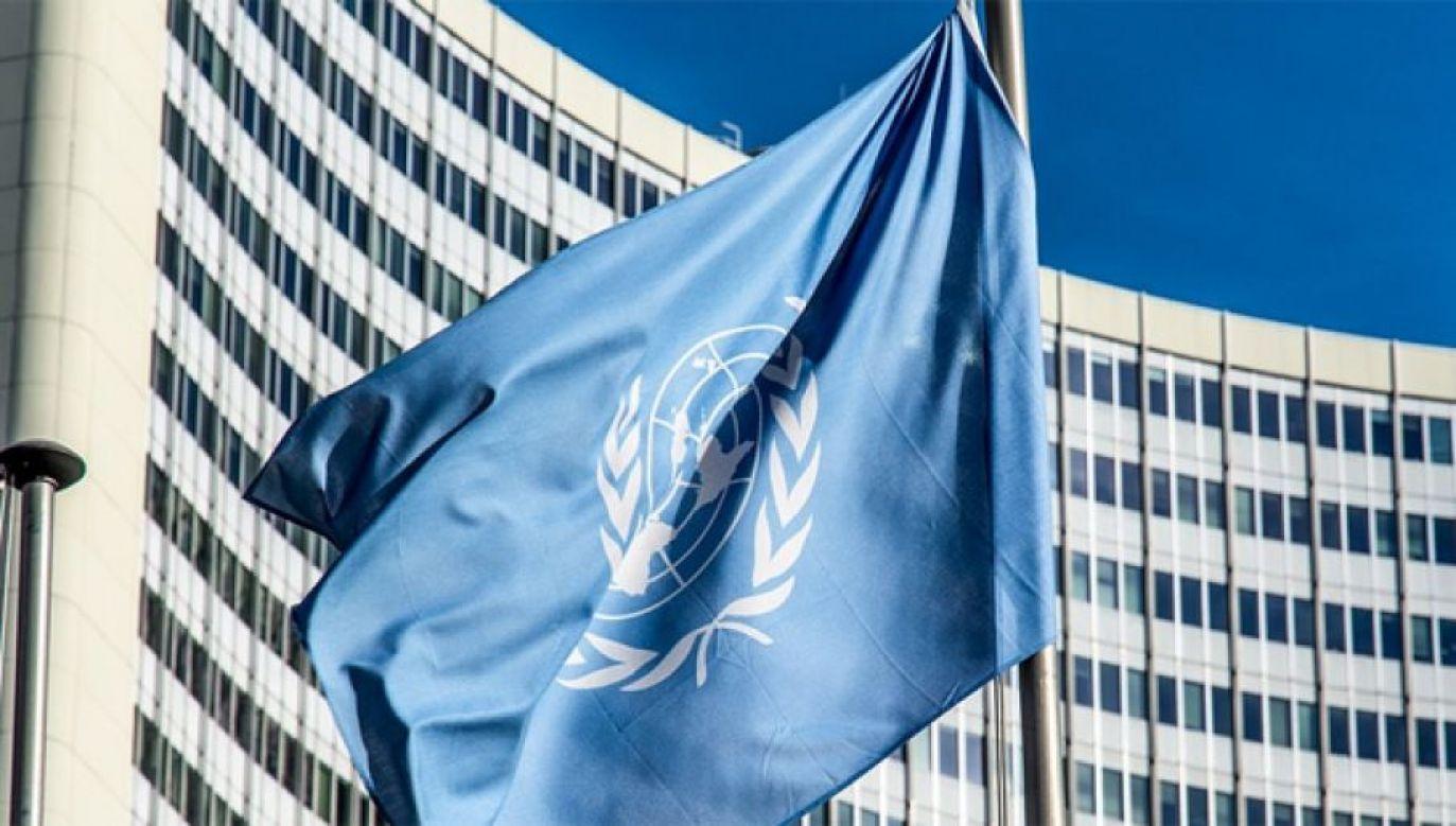 Flaga ONZ (fot. edgarwinkler/Pixabay)