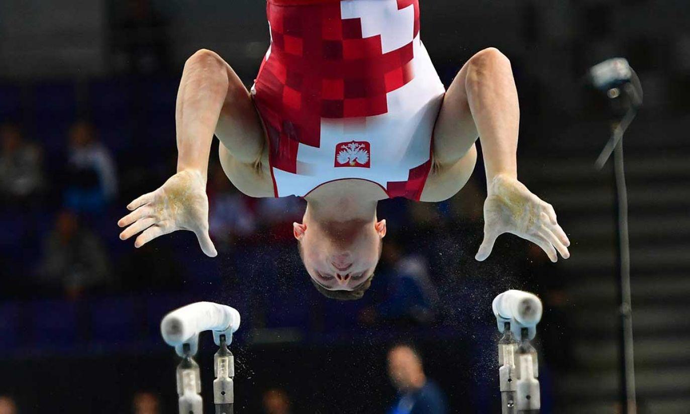 (fot. PAP/Marcin Bielecki)