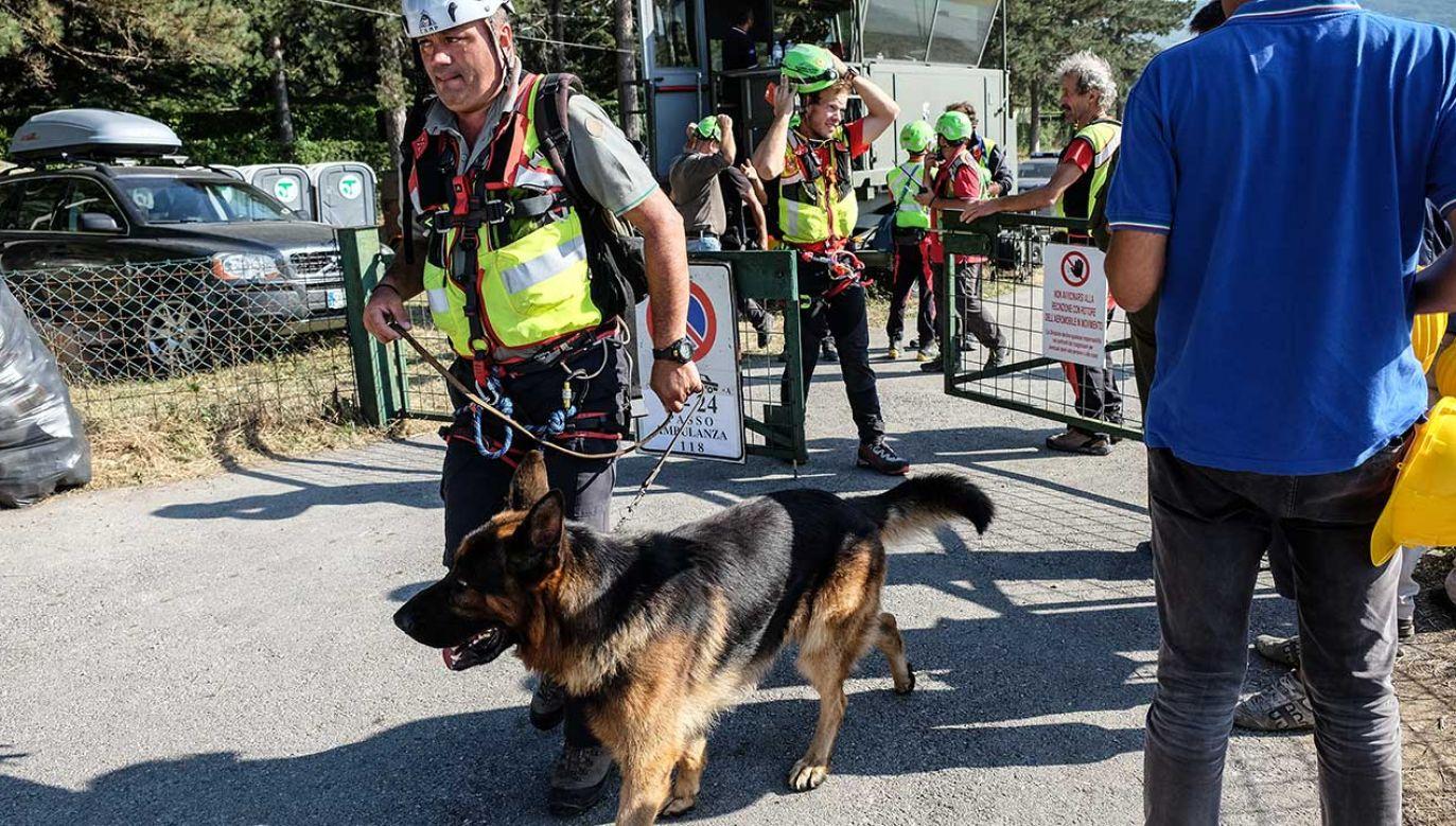 Straż pożarna w Ligurii z zespołem psów ratunkowych nabyła mobilny sprzęt weterynaryjny (fot. Vittorio Daniele/NurPhoto/Getty Images)