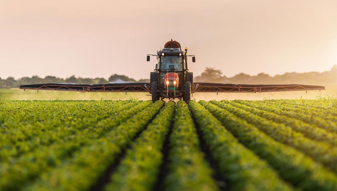 Głównym założeniem tej strategii jest ograniczenie użycia pestycydów (fot.  Shutterstock/Fotokostic)
