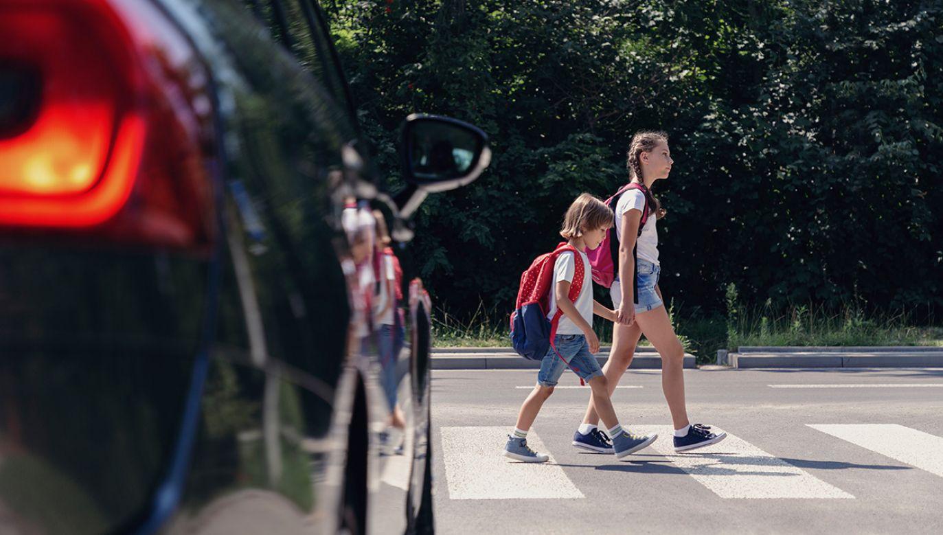 W 2018 r. na polskich drogach śmierć poniosło 803 pieszych (fot. Shutterstock/Photographee.eu)