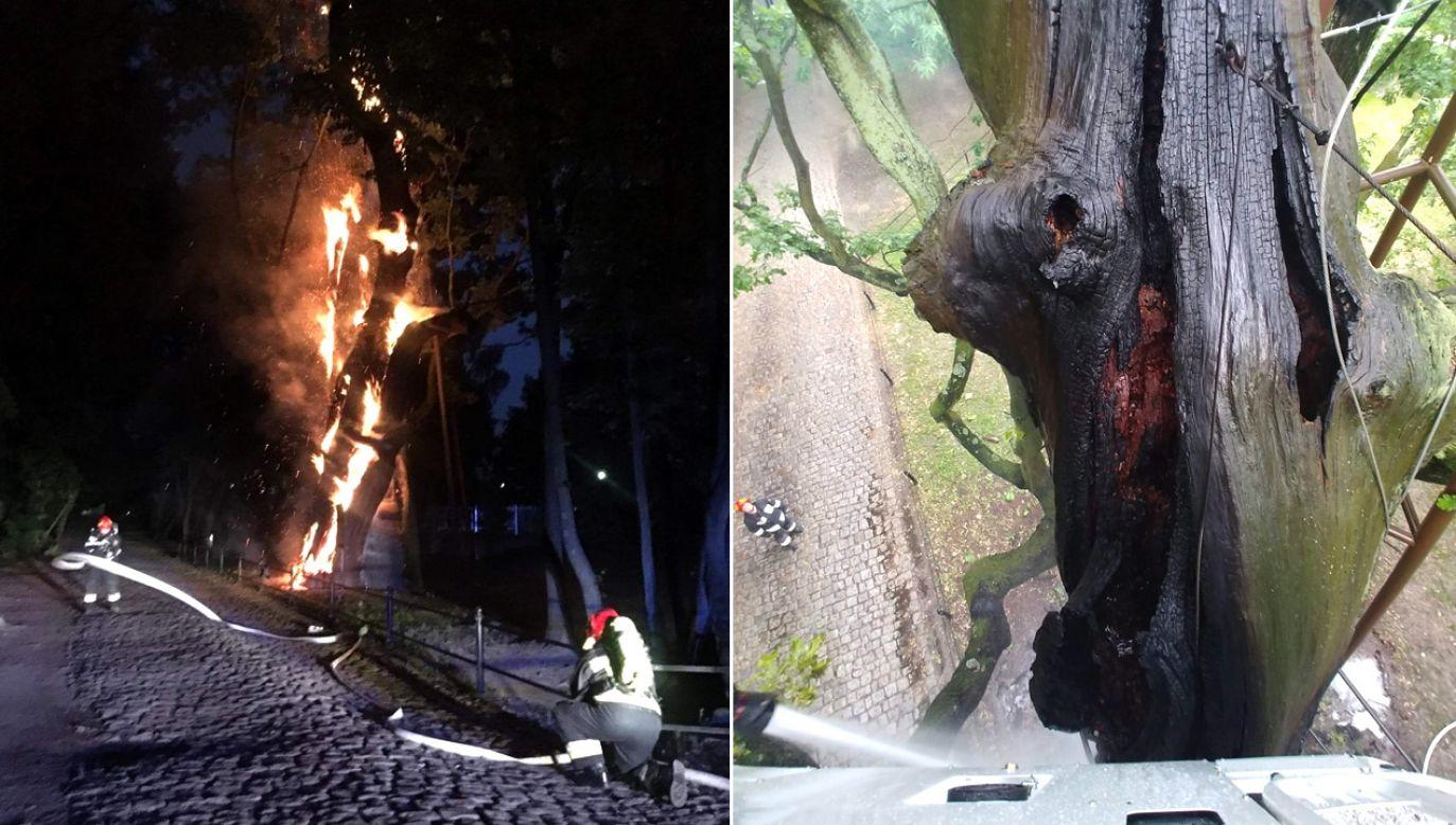 Do pożaru doszło na warszawskim Ursynowie w nocy z niedzieli na poniedziałek (fot. FB/Jednostka Ratowniczo-Gaśnicza nr 17 PSP w Warszawie)