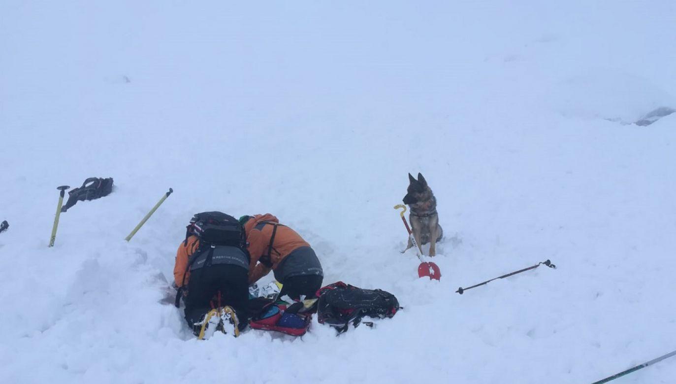 Miejsce, gdzie znajdował się zasypany narciarz, wskazał pies lawinowy (fot. HZS)