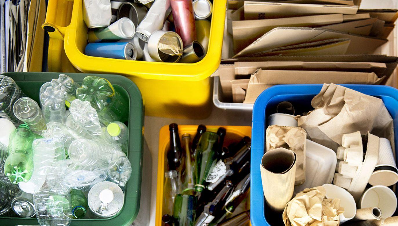 Pieniądze pomogą zutylizować odpady rolnicze (fot. Shutterstock/Rawpixel.com)