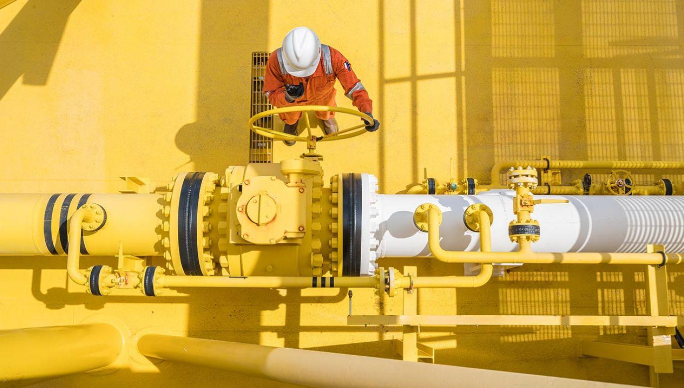 Habeck wzywa rząd niemiecki do rozmów z Moskwą na temat dostaw rosyjskiego gazu (fot. Shutterstock/Oil and Gas Photographer)