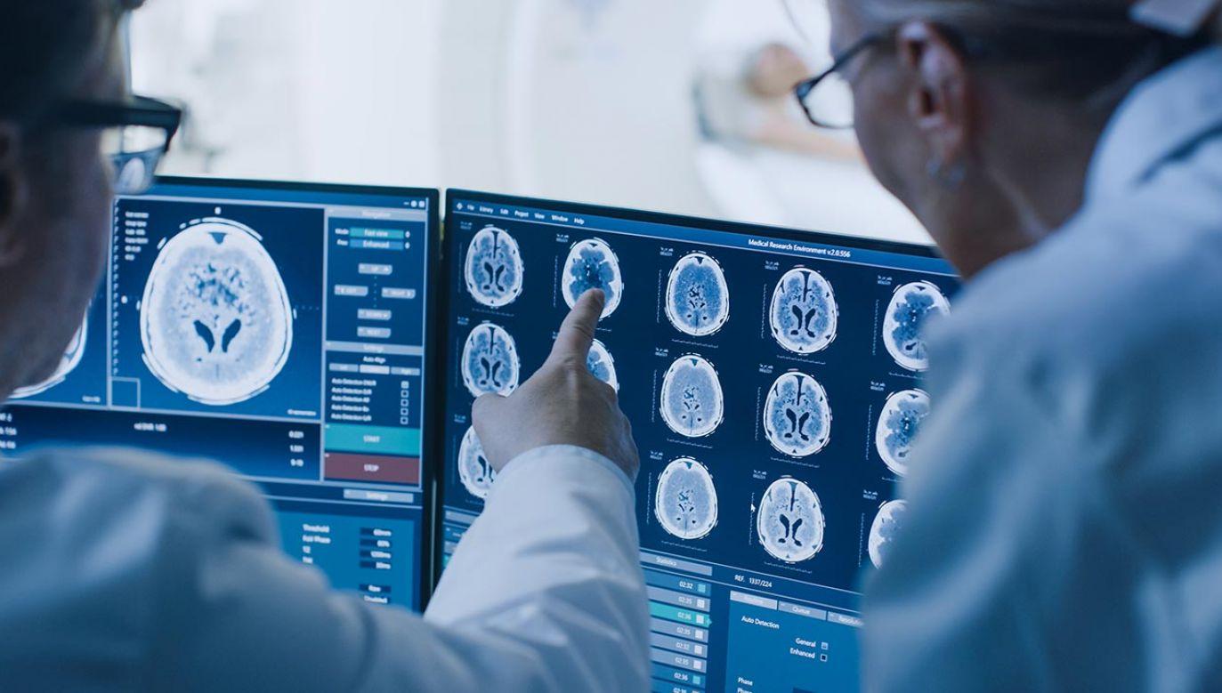 """Grant w wysokości 100 mln zł ma wprowadzić Polskę """"do czołówki światowej w zakresie immunoterapii"""" (fot. Shutterstock/Gorodenkoff)"""