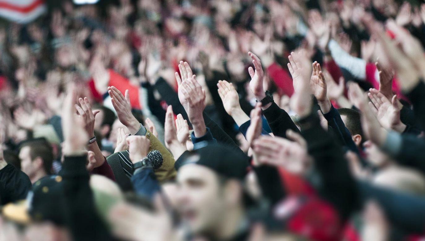 Na wybory zamierza pójść ponad 80 procent kibiców (fot. Shutterstock/Paparacy)