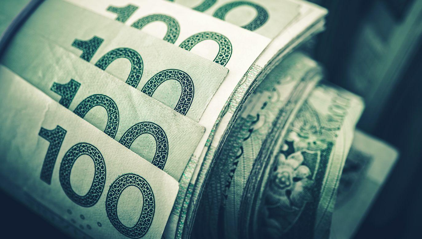 """Wzrost płacy minimalnej to nie """"socjal"""" – mówi min. Gowin (fot. Shutterstock/welcomia)"""