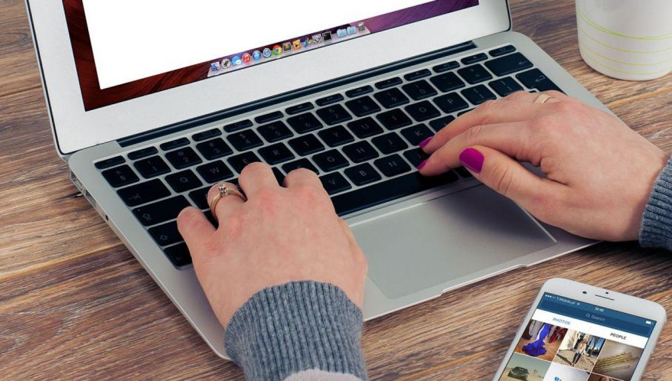 Udział w turnieju jest bezpłatny (fot.pixabay.com/FirmBee)
