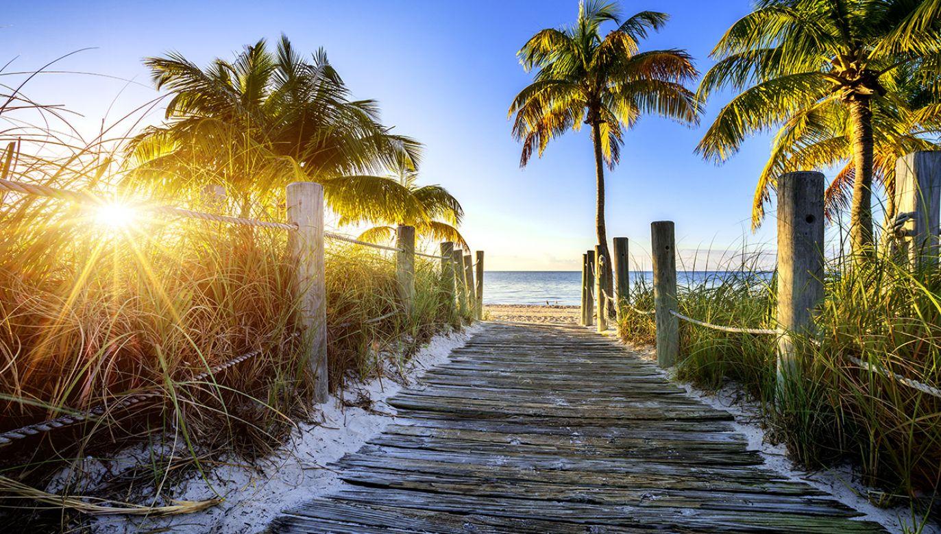 Ucieczka do raju to w rzeczywistości ukrycie bieżącego dochodu przed podatkiem, ale wiąże się również z nieopodatkowaniem zysków osiąganych z wytransferowanego już kapitału (fot. Shutterstock/ventdusud)