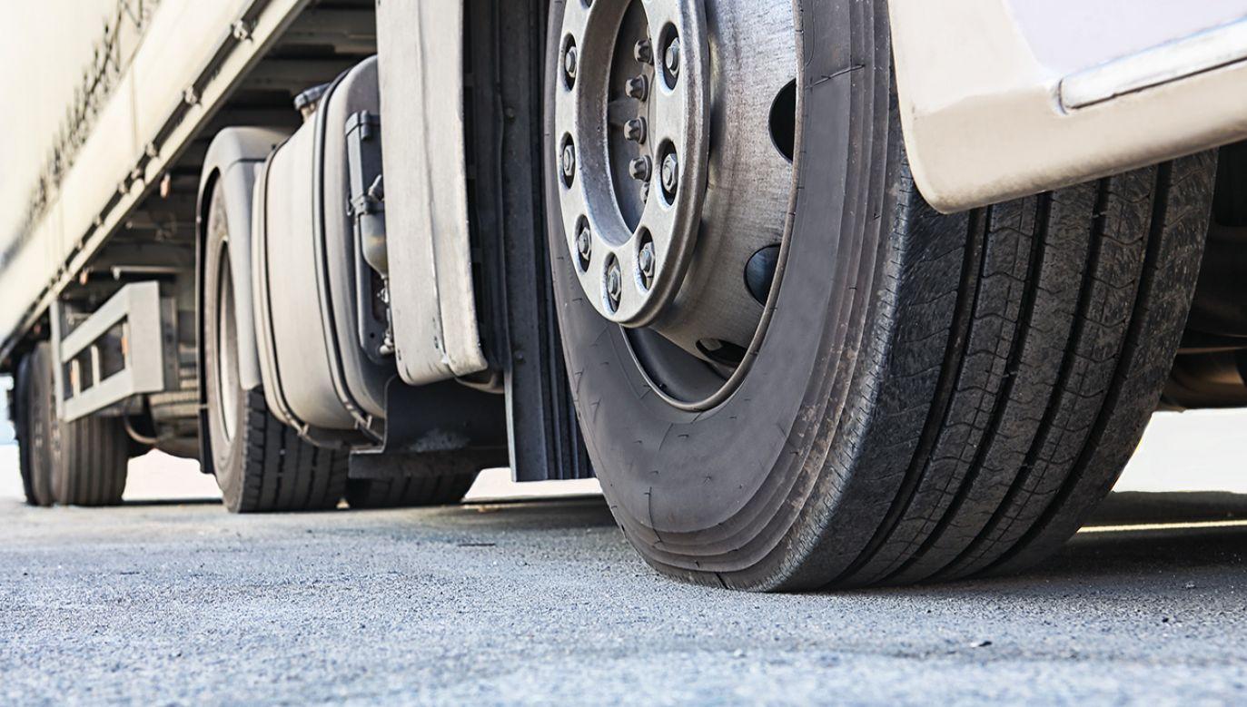 Kierowca był trzeźwy (fot. Shutterstock/Mikbiz)